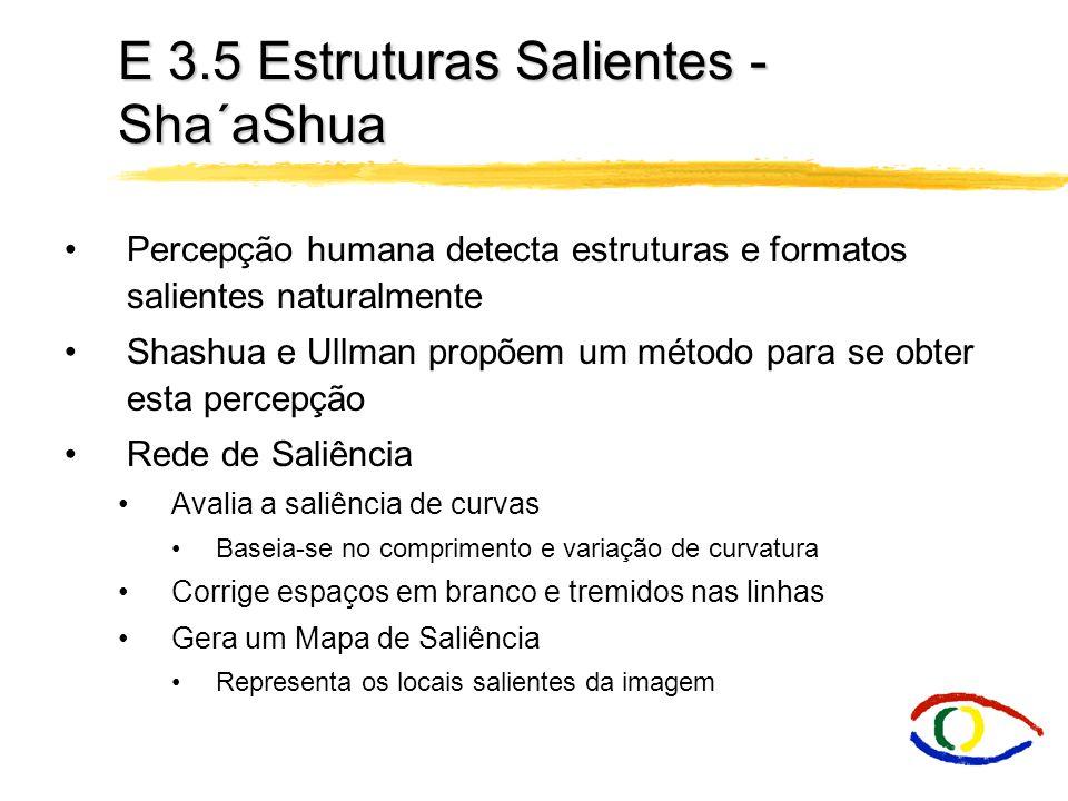 E 3.5 Estruturas Salientes - Sha´aShua Percepção humana detecta estruturas e formatos salientes naturalmente Shashua e Ullman propõem um método para s