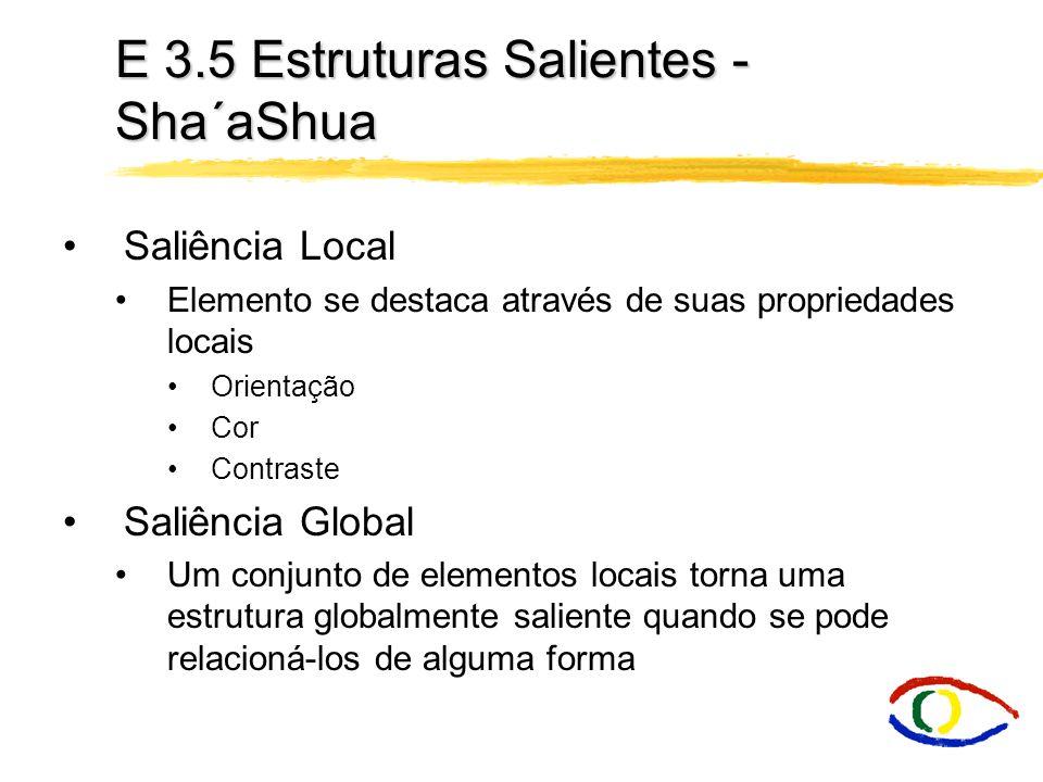 E 3.5 Estruturas Salientes - Sha´aShua Saliência Local Elemento se destaca através de suas propriedades locais Orientação Cor Contraste Saliência Glob