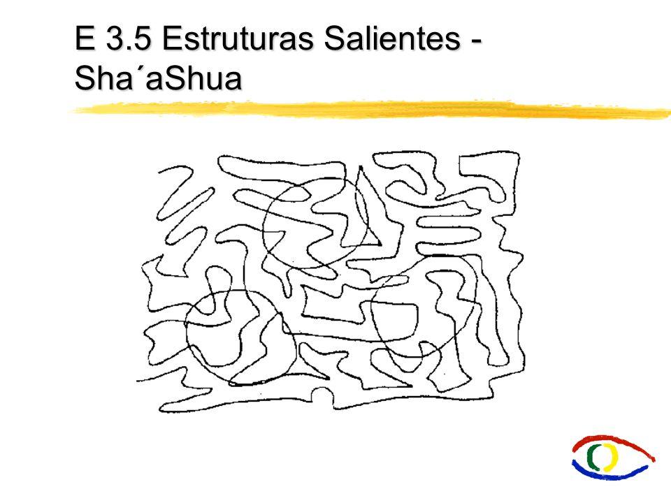 E 3.5 Estruturas Salientes - Sha´aShua