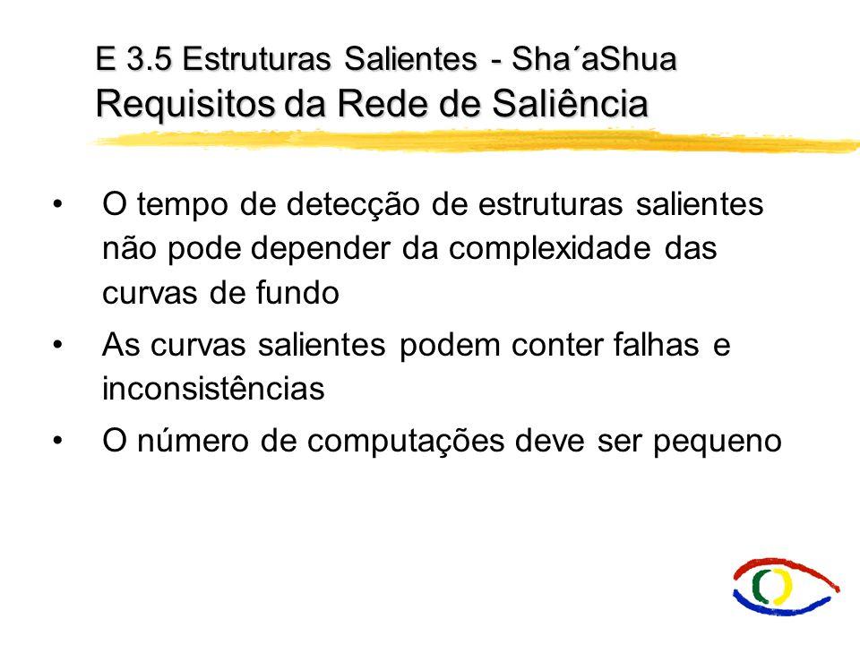 E 3.5 Estruturas Salientes - Sha´aShua Requisitos da Rede de Saliência O tempo de detecção de estruturas salientes não pode depender da complexidade d