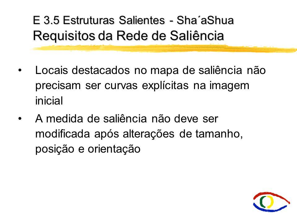 E 3.5 Estruturas Salientes - Sha´aShua Requisitos da Rede de Saliência Locais destacados no mapa de saliência não precisam ser curvas explícitas na im