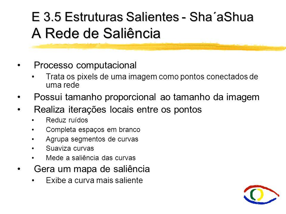 E 3.5 Estruturas Salientes - Sha´aShua O Cálculo da Saliência Shashua e Ullman definiram uma função para calcular a saliência dos fragmentos de uma curva - Gera Rede de Saliência Cresce de acordo com o comprimento da curva Decresce com a variação da curvatura e com a quantidade de fragmentos A medida final é a soma das contribuições das medidas de saliência dos segmentos