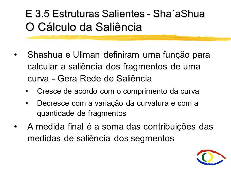 E 3.5 Estruturas Salientes - Sha´aShua O Cálculo da Saliência Shashua e Ullman definiram uma função para calcular a saliência dos fragmentos de uma cu