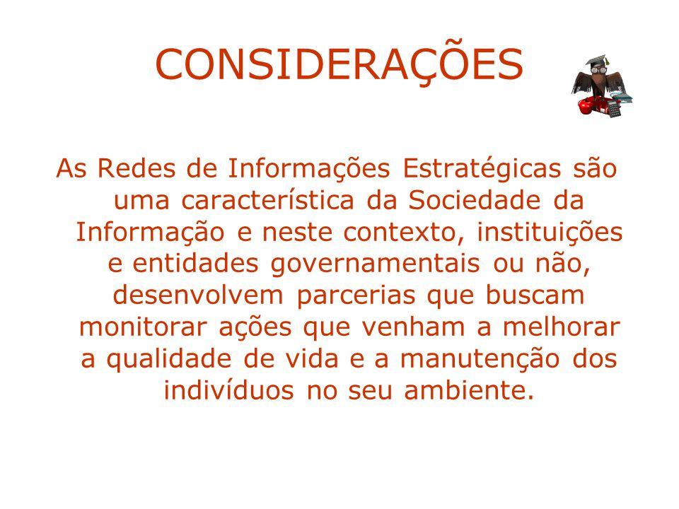 CONSIDERAÇÕES As Redes de Informações Estratégicas são uma característica da Sociedade da Informação e neste contexto, instituições e entidades govern