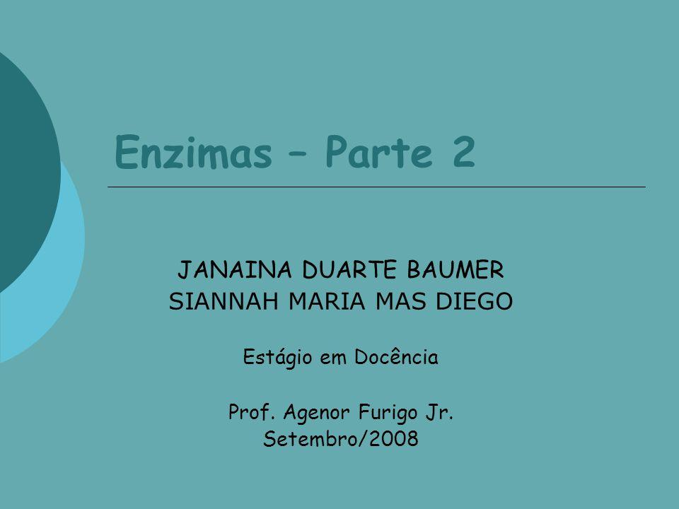 Enzimas – Parte 2 JANAINA DUARTE BAUMER SIANNAH MARIA MAS DIEGO Estágio em Docência Prof. Agenor Furigo Jr. Setembro/2008