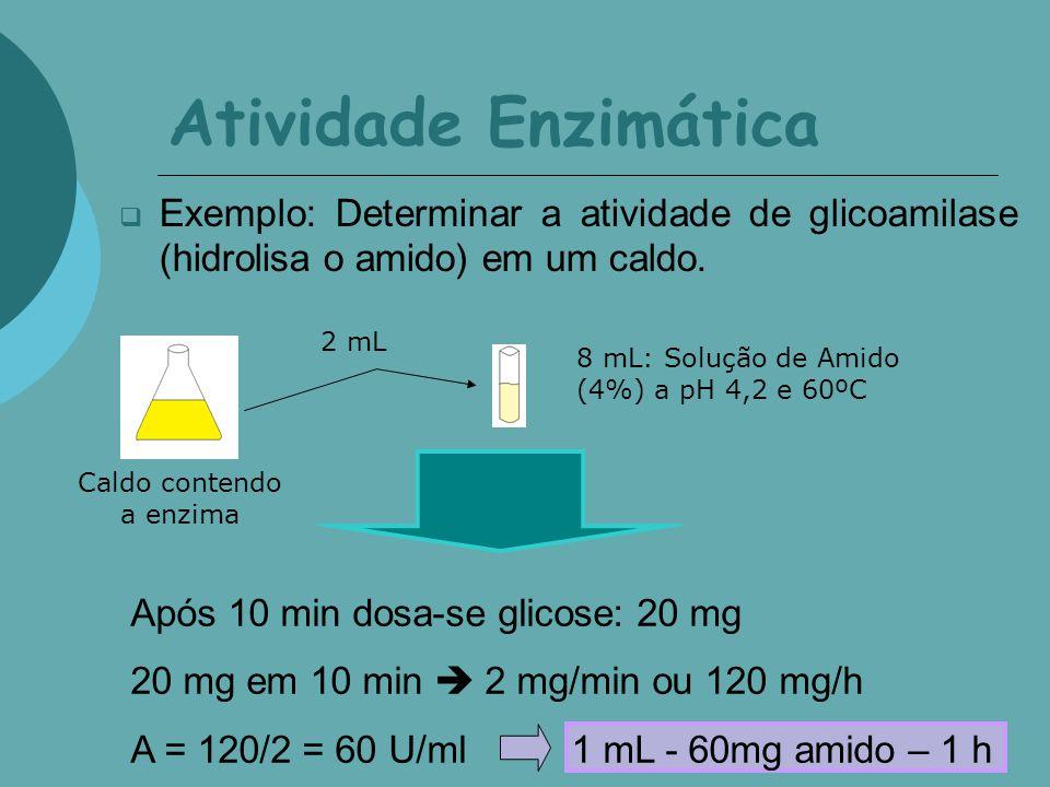 Atividade Enzimática Exemplo: Determinar a atividade de glicoamilase (hidrolisa o amido) em um caldo. 2 mL 8 mL: Solução de Amido (4%) a pH 4,2 e 60ºC