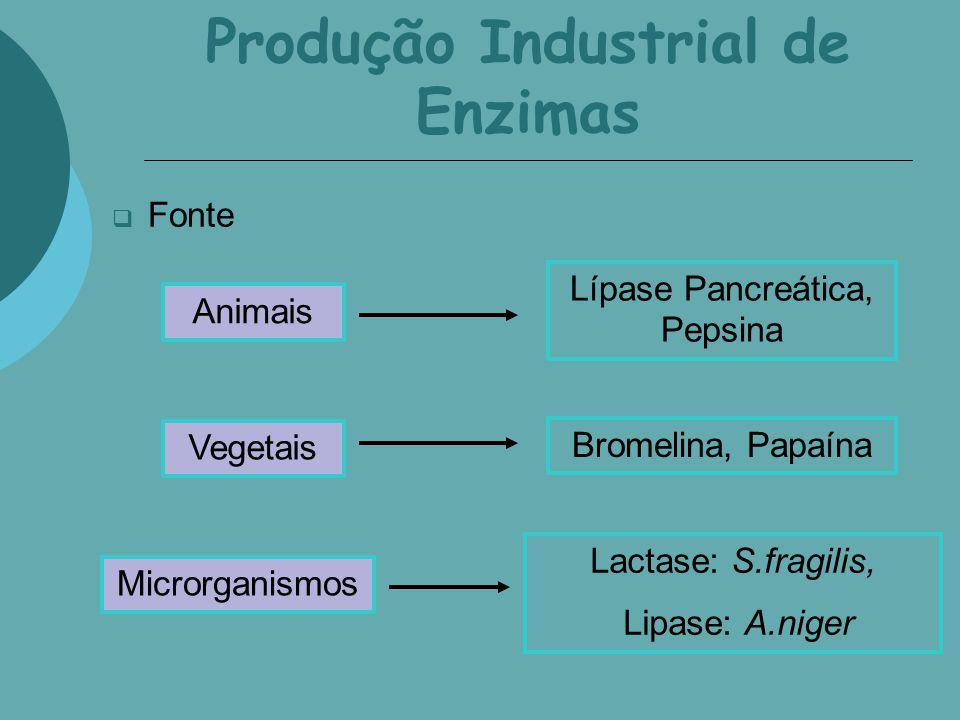 Produção Industrial de Enzimas Fonte Animais Vegetais Microrganismos Lípase Pancreática, Pepsina Bromelina, Papaína Lactase: S.fragilis, Lipase: A.nig