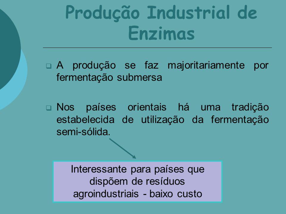 Produção Industrial de Enzimas A produção se faz majoritariamente por fermentação submersa Nos países orientais há uma tradição estabelecida de utiliz