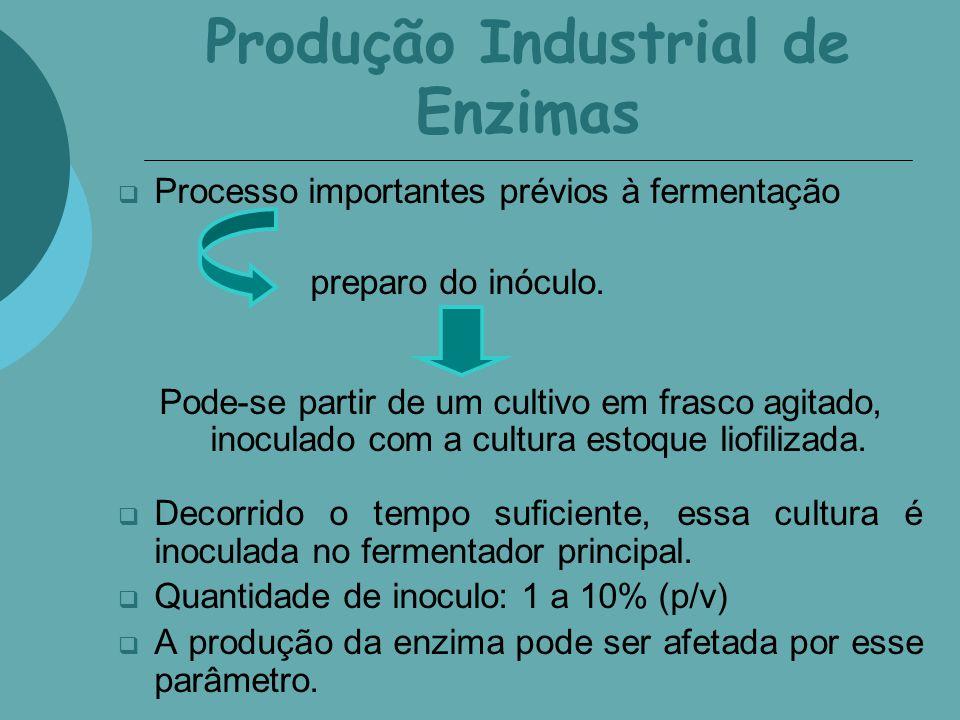 Produção Industrial de Enzimas Processo importantes prévios à fermentação preparo do inóculo. Pode-se partir de um cultivo em frasco agitado, inoculad