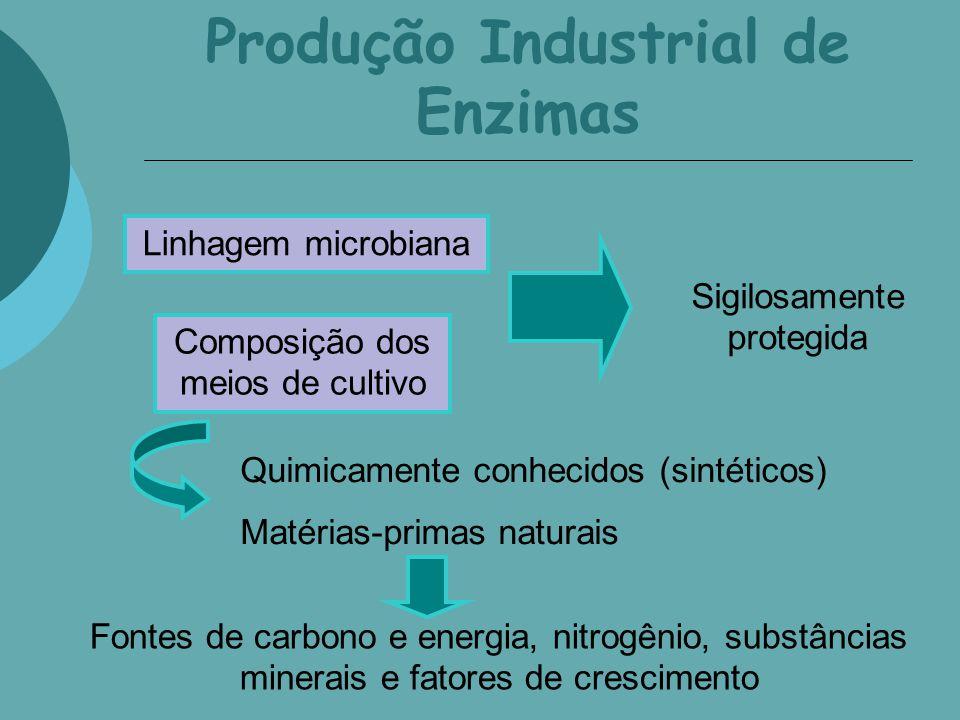 Produção Industrial de Enzimas Linhagem microbiana Composição dos meios de cultivo Sigilosamente protegida Quimicamente conhecidos (sintéticos) Matéri