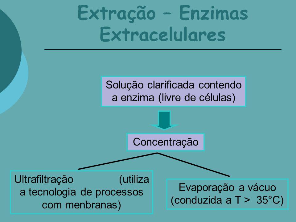 Extração – Enzimas Extracelulares Solução clarificada contendo a enzima (livre de células) Concentração Ultrafiltração (utiliza a tecnologia de proces