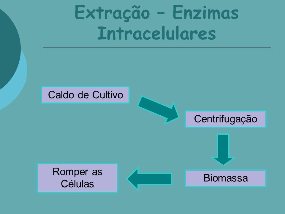 Extração – Enzimas Intracelulares Centrifugação Romper as Células Caldo de Cultivo Biomassa