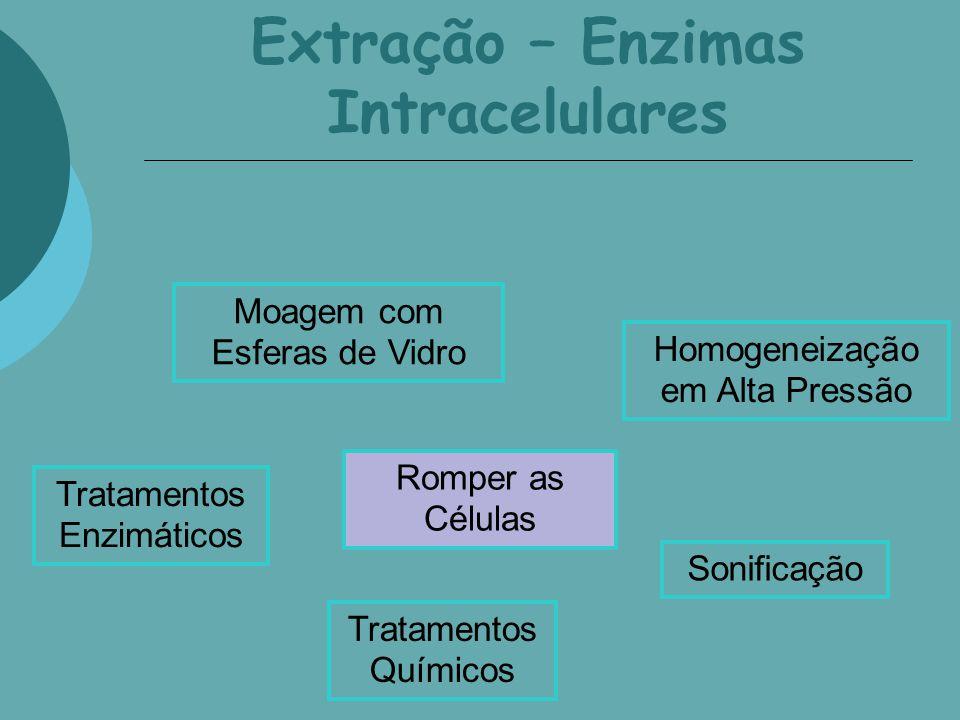 Extração – Enzimas Intracelulares Romper as Células Moagem com Esferas de Vidro Homogeneização em Alta Pressão Sonificação Tratamentos Químicos Tratam