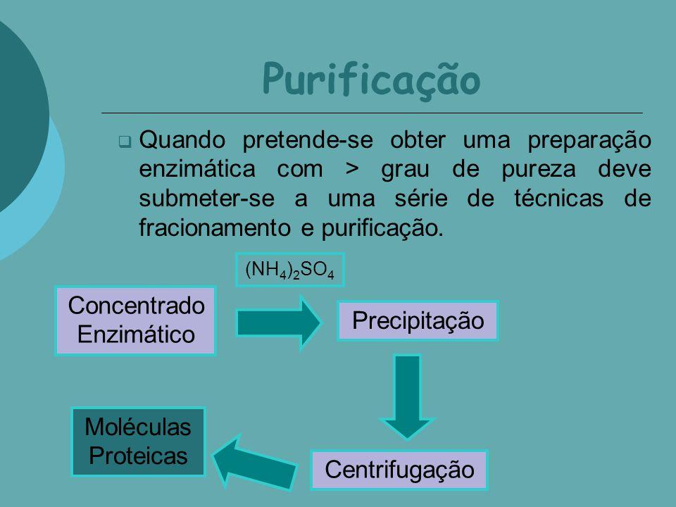 Purificação Quando pretende-se obter uma preparação enzimática com > grau de pureza deve submeter-se a uma série de técnicas de fracionamento e purifi