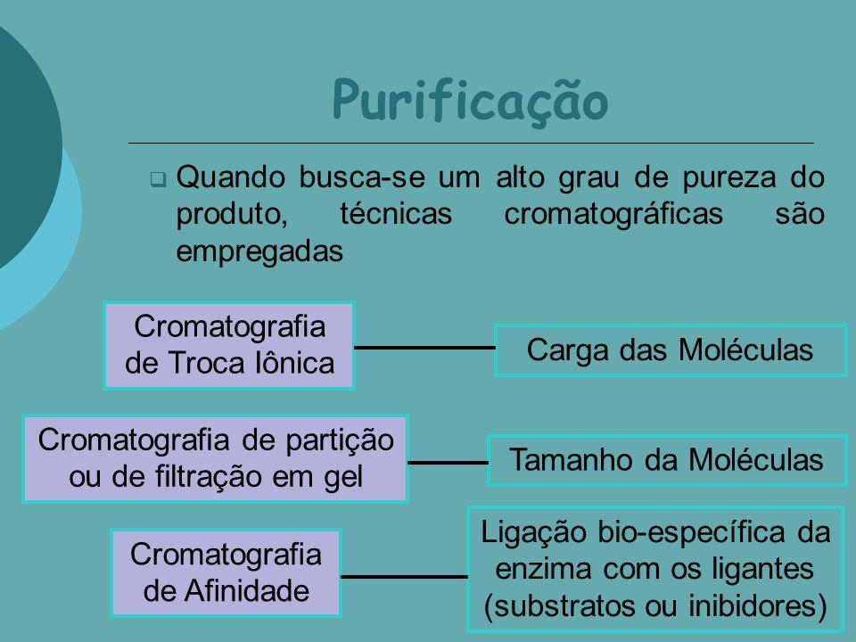 Purificação Quando busca-se um alto grau de pureza do produto, técnicas cromatográficas são empregadas Cromatografia de Troca Iônica Carga das Molécul