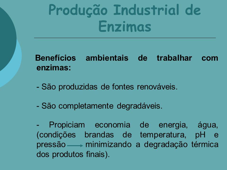 Produção Industrial de Enzimas Benefícios ambientais de trabalhar com enzimas: - São produzidas de fontes renováveis. - São completamente degradáveis.