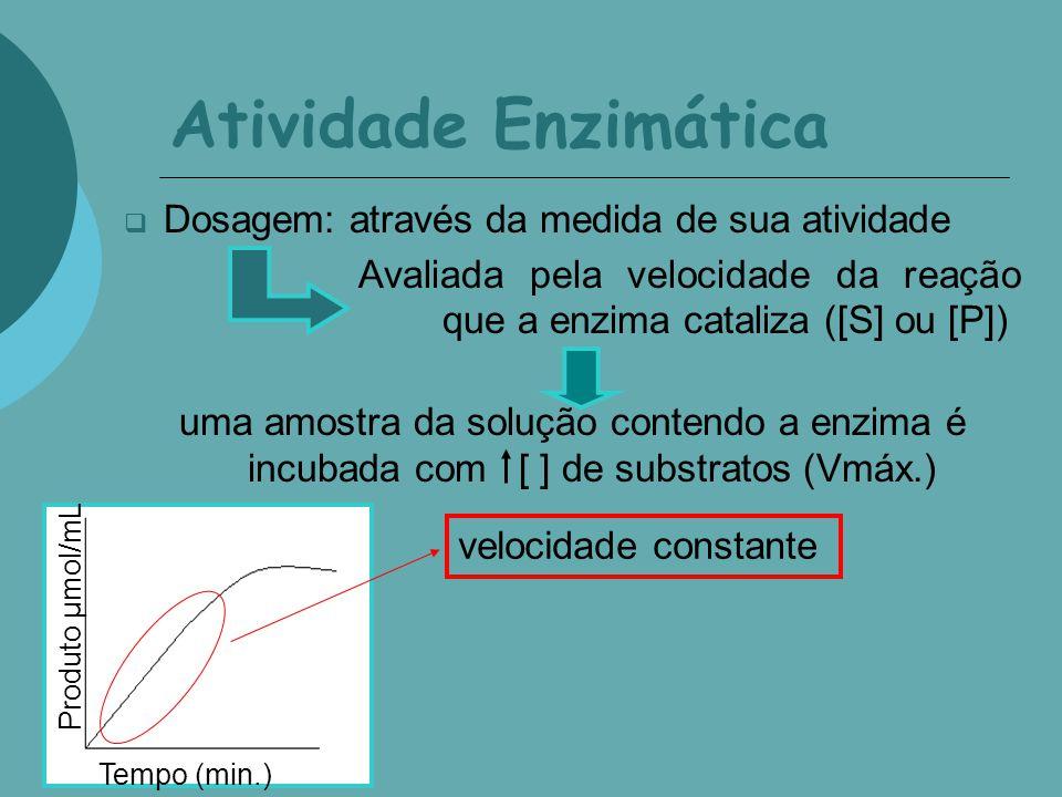 Atividade Enzimática Dosagem: através da medida de sua atividade Avaliada pela velocidade da reação que a enzima cataliza uma amostra da solução contendo a enzima é incubada com [ ] de substratos (Vmáx.) Produto µmol/mL Tempo (min.) [ ] de substrato: -inativação parcial da enz., -inibição por produto.