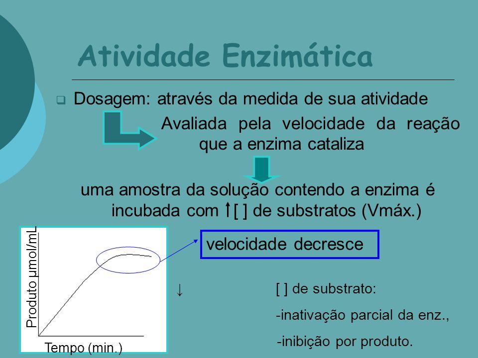 Atividade Enzimática Dosagem: através da medida de sua atividade Avaliada pela velocidade da reação que a enzima cataliza uma amostra da solução contendo a enzima é incubada com [ ] de substratos (Vmáx.) Produto µmol/mL Tempo (min.) velocidade constante [ ] de substrato: inativação parcial da enz., inibição por produto e deslocamento do equilíbrio (reação reversível).