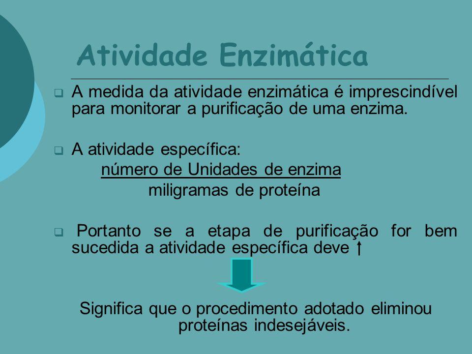 Atividade Enzimática A medida da atividade enzimática é imprescindível para monitorar a purificação de uma enzima. A atividade específica: número de U