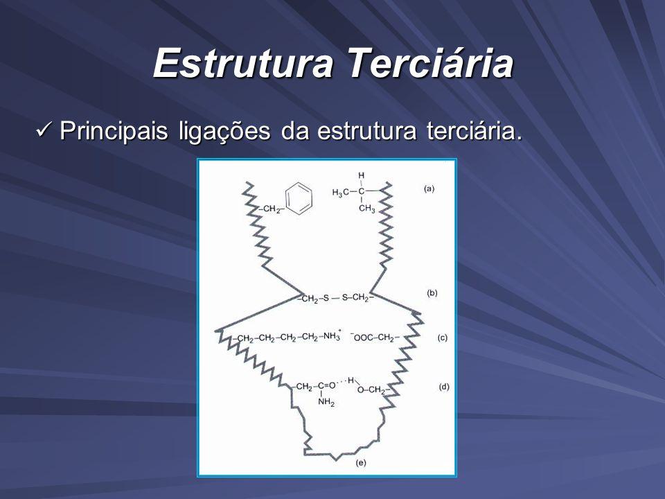 Estrutura Terciária Principais ligações da estrutura terciária.
