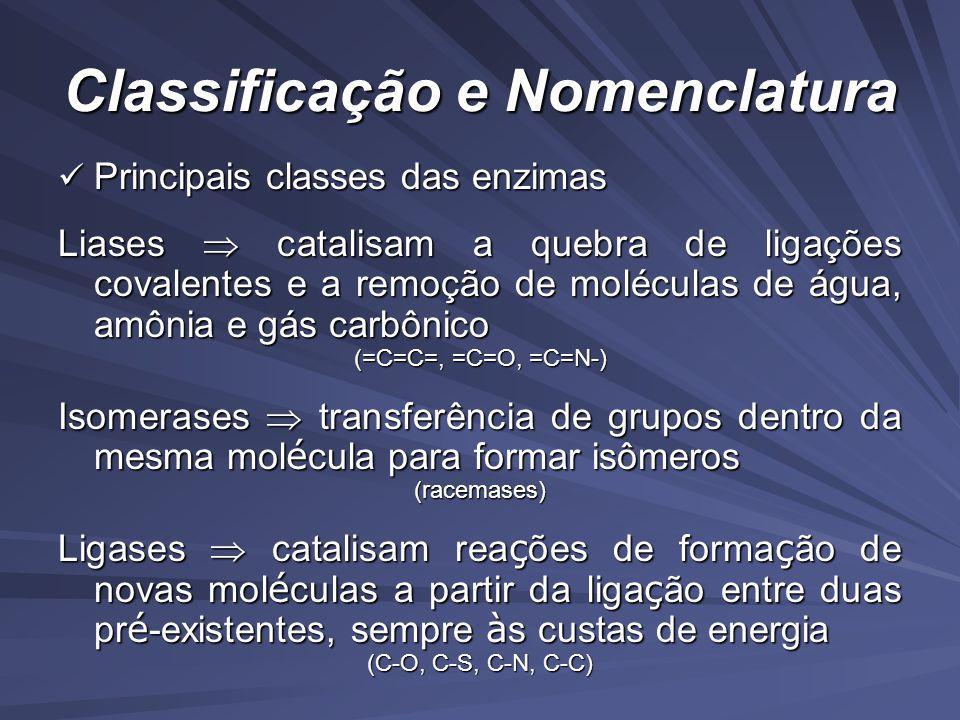 Classificação e Nomenclatura Principais classes das enzimas Principais classes das enzimas Liases catalisam a quebra de ligações covalentes e a remoção de moléculas de água, amônia e gás carbônico (=C=C=, =C=O, =C=N-) Isomerases transferência de grupos dentro da mesma mol é cula para formar isômeros (racemases) Ligases catalisam rea ç ões de forma ç ão de novas mol é culas a partir da liga ç ão entre duas pr é -existentes, sempre à s custas de energia (C-O, C-S, C-N, C-C)