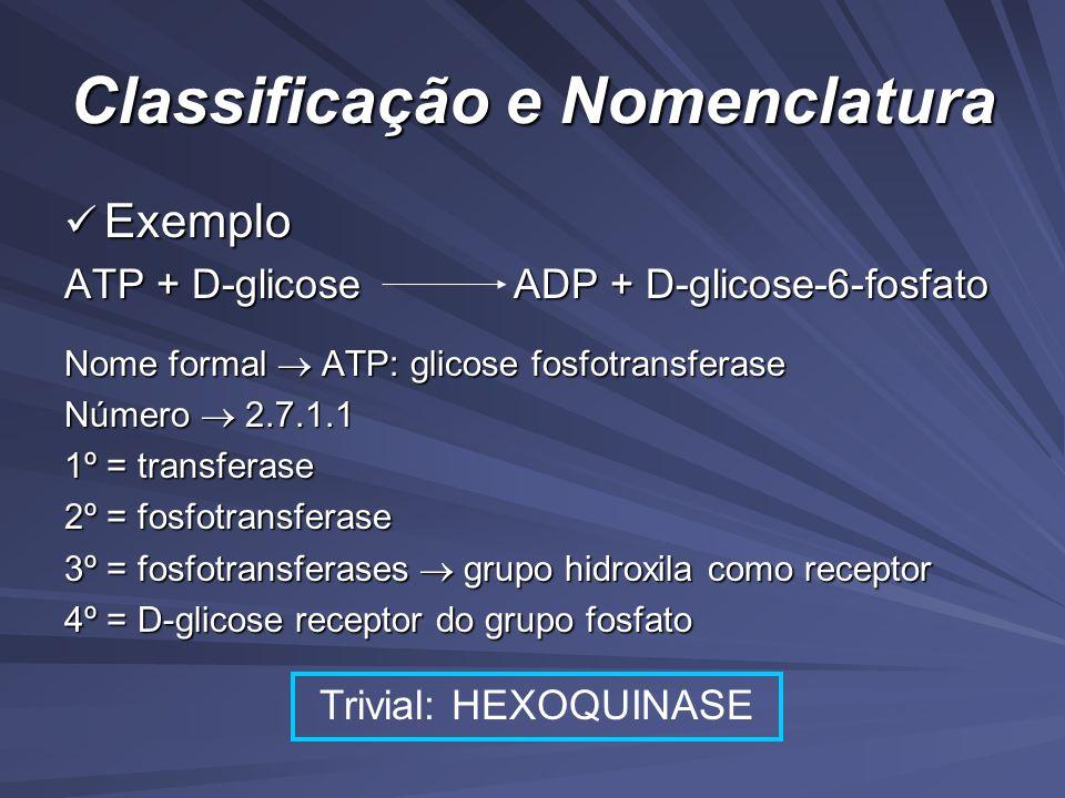 Classificação e Nomenclatura Exemplo Exemplo ATP + D-glicose ADP + D-glicose-6-fosfato Nome formal ATP: glicose fosfotransferase Número 2.7.1.1 1º = transferase 2º = fosfotransferase 3º = fosfotransferases grupo hidroxila como receptor 4º = D-glicose receptor do grupo fosfato Trivial: HEXOQUINASE