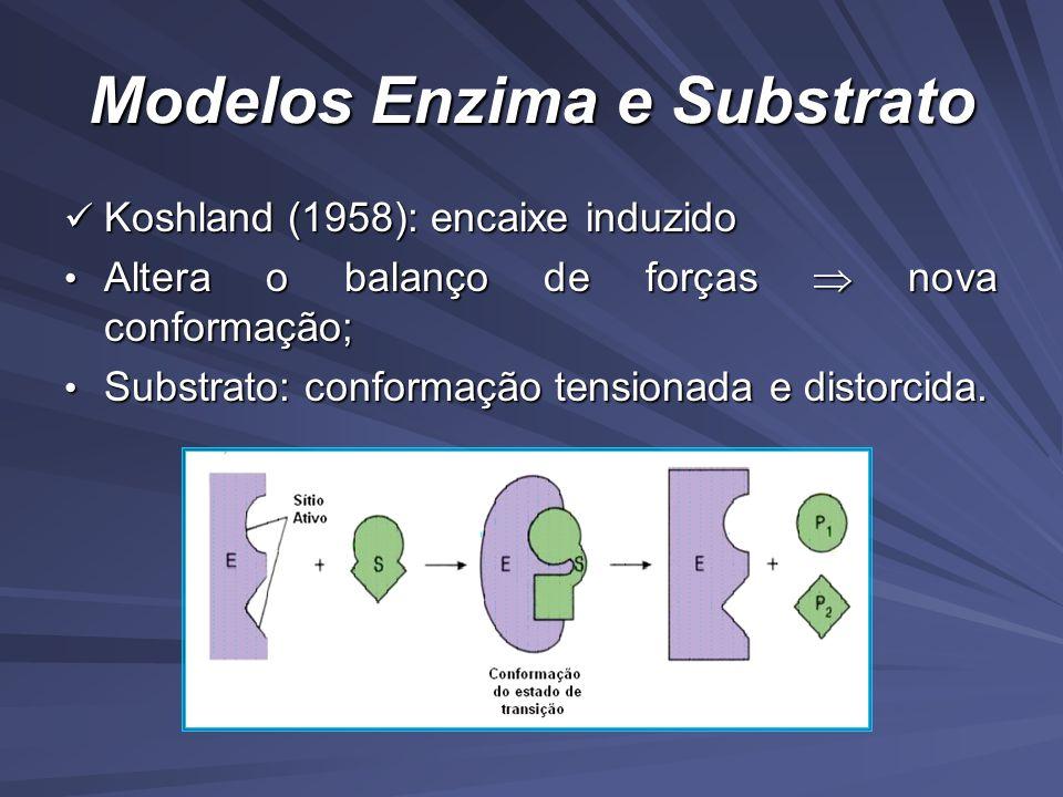 Modelos Enzima e Substrato Koshland (1958): encaixe induzido Koshland (1958): encaixe induzido Altera o balanço de forças nova conformação; Altera o balanço de forças nova conformação; Substrato: conformação tensionada e distorcida.