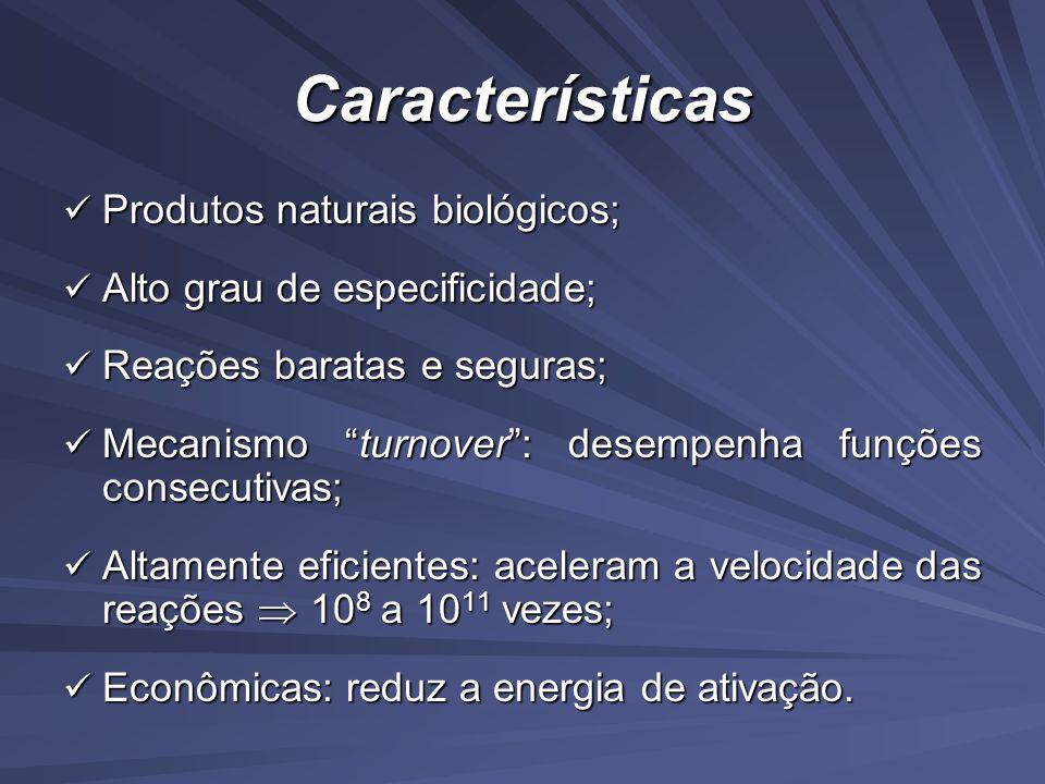 Características Produtos naturais biológicos; Produtos naturais biológicos; Alto grau de especificidade; Alto grau de especificidade; Reações baratas e seguras; Reações baratas e seguras; Mecanismo turnover: desempenha funções consecutivas; Mecanismo turnover: desempenha funções consecutivas; Altamente eficientes: aceleram a velocidade das reações 10 8 a 10 11 vezes; Altamente eficientes: aceleram a velocidade das reações 10 8 a 10 11 vezes; Econômicas: reduz a energia de ativação.