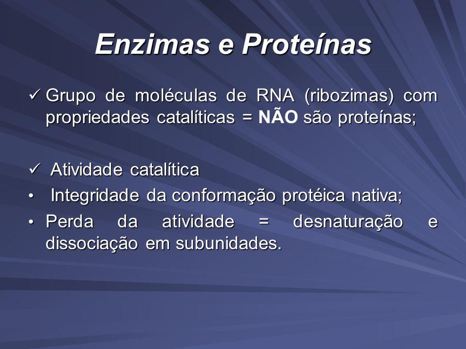Enzimas e Proteínas Grupo de moléculas de RNA (ribozimas) com propriedades catalíticas = são proteínas; Grupo de moléculas de RNA (ribozimas) com propriedades catalíticas = NÃO são proteínas; Atividade catalítica Atividade catalítica Integridade da conformação protéica nativa; Integridade da conformação protéica nativa; Perda da atividade = desnaturação e dissociação em subunidades.