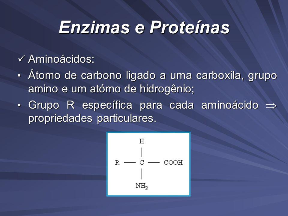 Enzimas e Proteínas Aminoácidos: Aminoácidos: Átomo de carbono ligado a uma carboxila, grupo amino e um atómo de hidrogênio; Átomo de carbono ligado a uma carboxila, grupo amino e um atómo de hidrogênio; Grupo R específica para cada aminoácido propriedades particulares.