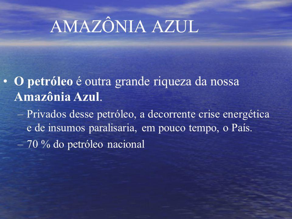 AMAZÔNIA AZUL O petróleo é outra grande riqueza da nossa Amazônia Azul.