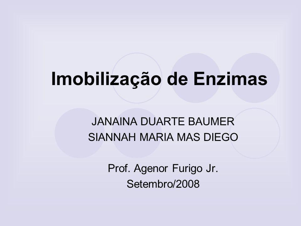 Imobilização de Enzimas O principal interesse em imobilizar uma enzima é obter um biocatalisador com atividade e estabilidade que não sejam afetadas durante o processo.