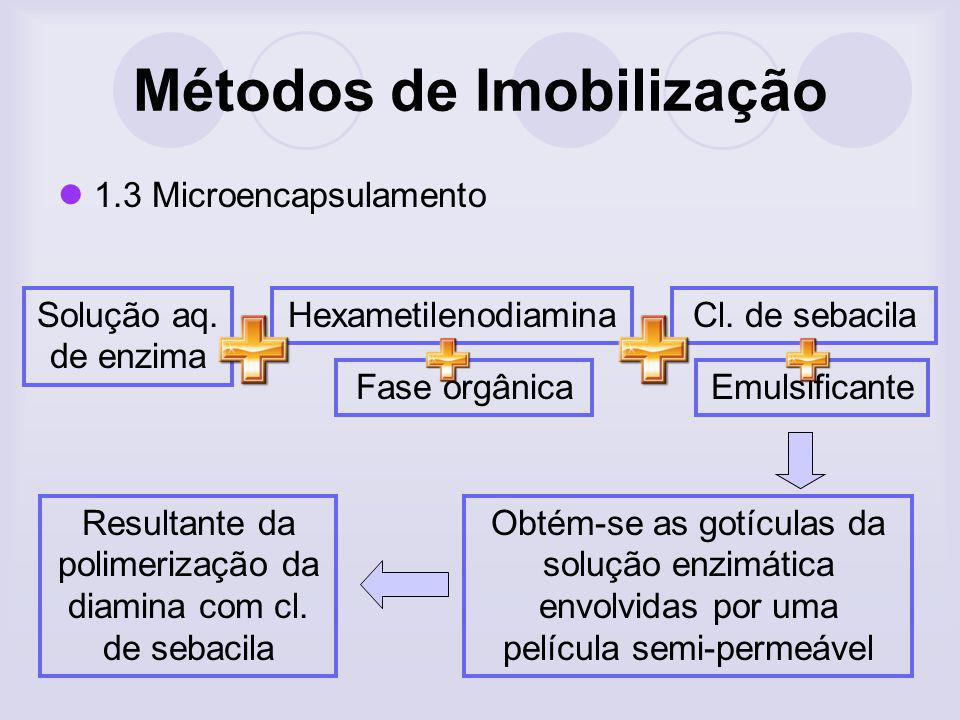 1.3 Microencapsulamento Solução aq. de enzima Hexametilenodiamina Fase orgânicaEmulsificante Cl. de sebacila Obtém-se as gotículas da solução enzimáti