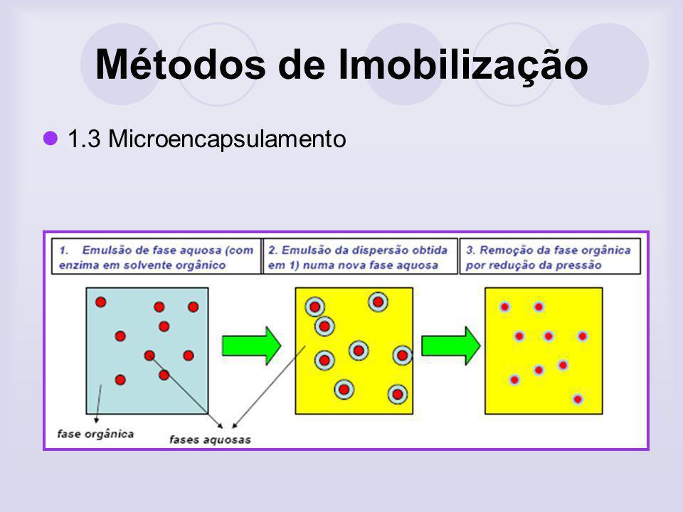 Métodos de Imobilização 1.3 Microencapsulamento