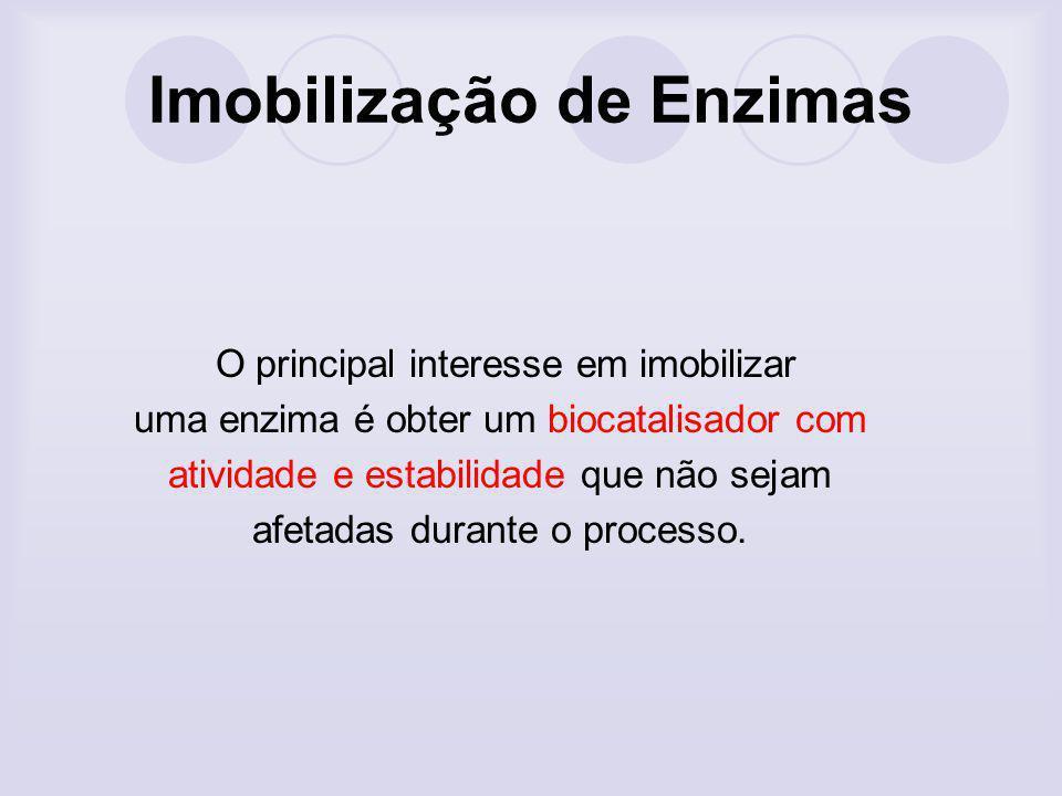 Imobilização de Enzimas O principal interesse em imobilizar uma enzima é obter um biocatalisador com atividade e estabilidade que não sejam afetadas d