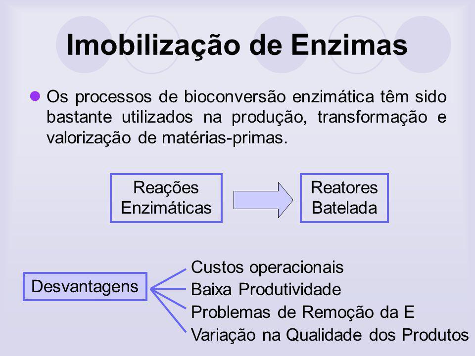 Imobilização de Enzimas Efeitos de microambiente Quando a E é ligada a um suporte inerte, ela vai ficar sujeita a uma circunvizinhança algo do que quando esta livre.
