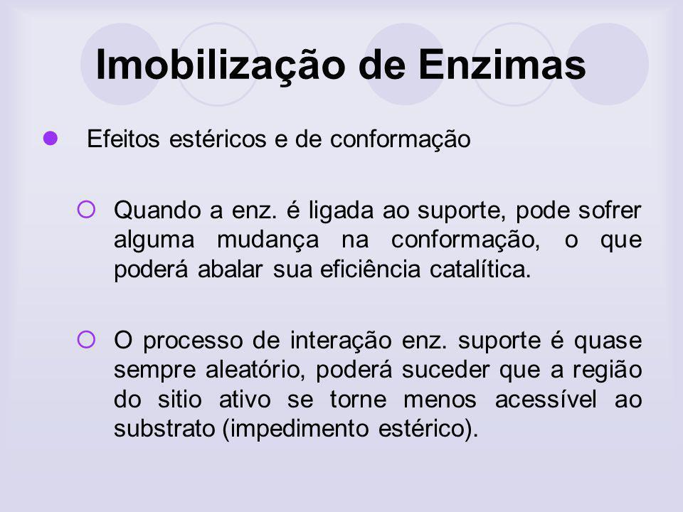 Imobilização de Enzimas Efeitos estéricos e de conformação Quando a enz. é ligada ao suporte, pode sofrer alguma mudança na conformação, o que poderá