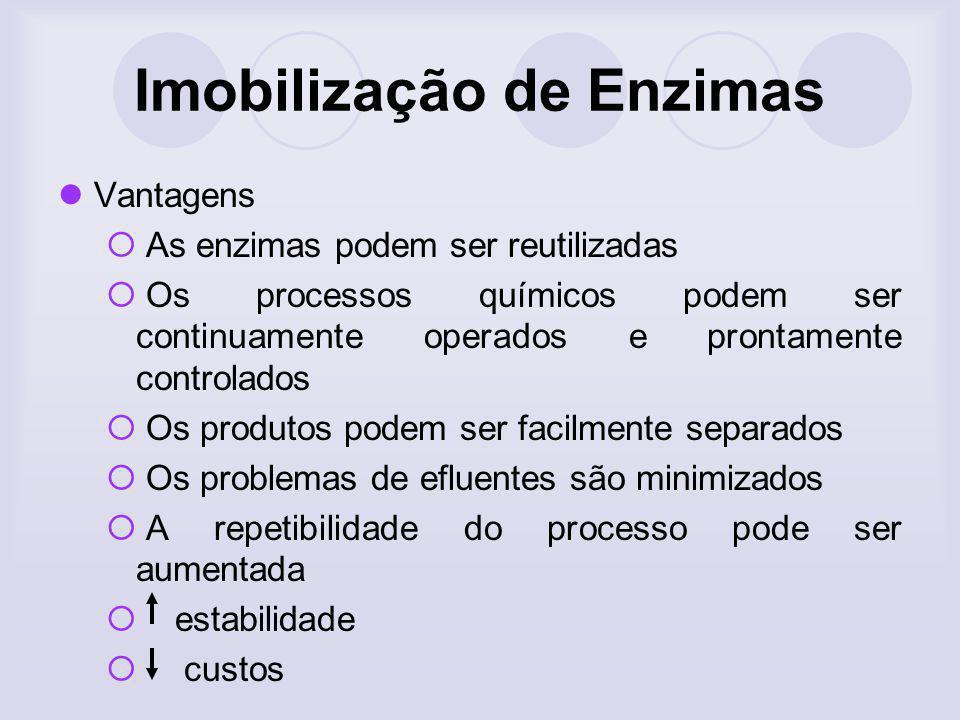 Imobilização de Enzimas Vantagens As enzimas podem ser reutilizadas Os processos químicos podem ser continuamente operados e prontamente controlados O