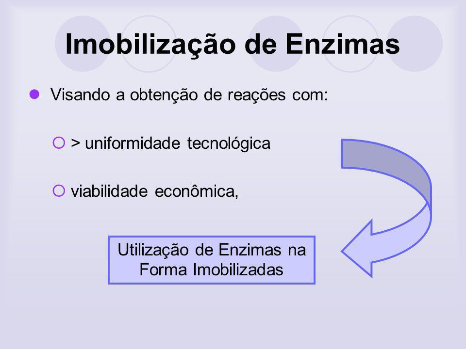 Imobilização de Enzimas Efeitos de microambiente O comportamento cinético de uma enzima presa a um suporte carregado pode diferir daquela apresentado pela enzima livre.