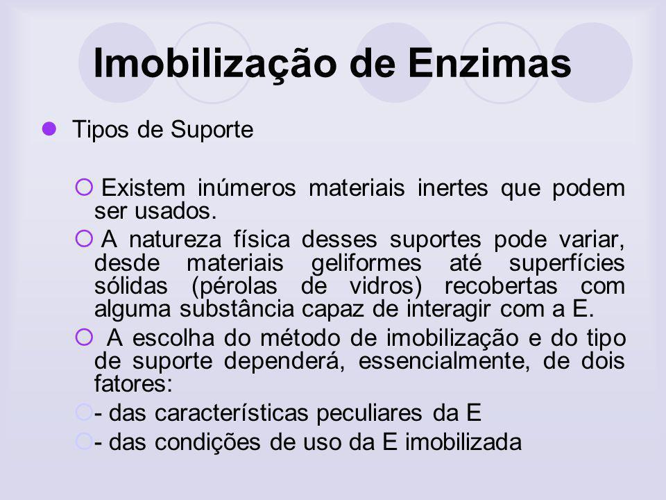 Imobilização de Enzimas Tipos de Suporte Existem inúmeros materiais inertes que podem ser usados. A natureza física desses suportes pode variar, desde