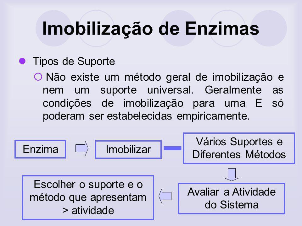 Imobilização de Enzimas Tipos de Suporte Não existe um método geral de imobilização e nem um suporte universal. Geralmente as condições de imobilizaçã