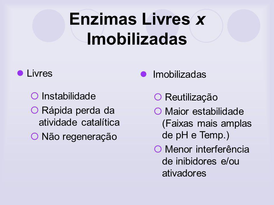 Enzimas Livres x Imobilizadas Livres Instabilidade Rápida perda da atividade catalítica Não regeneração Imobilizadas Reutilização Maior estabilidade (