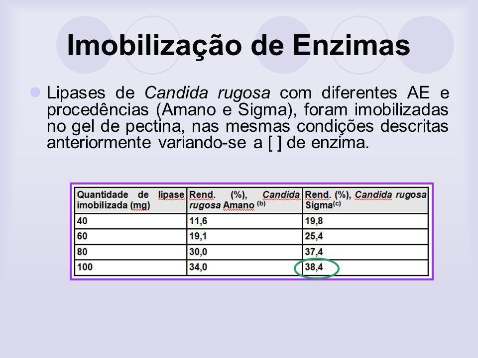 Imobilização de Enzimas Lipases de Candida rugosa com diferentes AE e procedências (Amano e Sigma), foram imobilizadas no gel de pectina, nas mesmas c