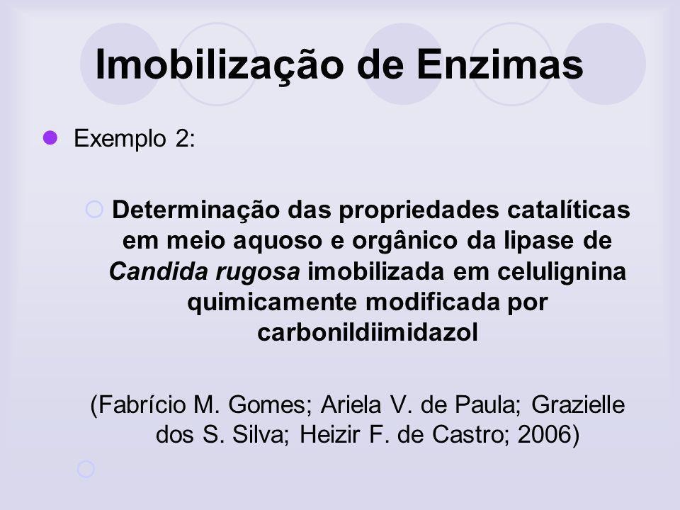 Imobilização de Enzimas Exemplo 2: Determinação das propriedades catalíticas em meio aquoso e orgânico da lipase de Candida rugosa imobilizada em celu