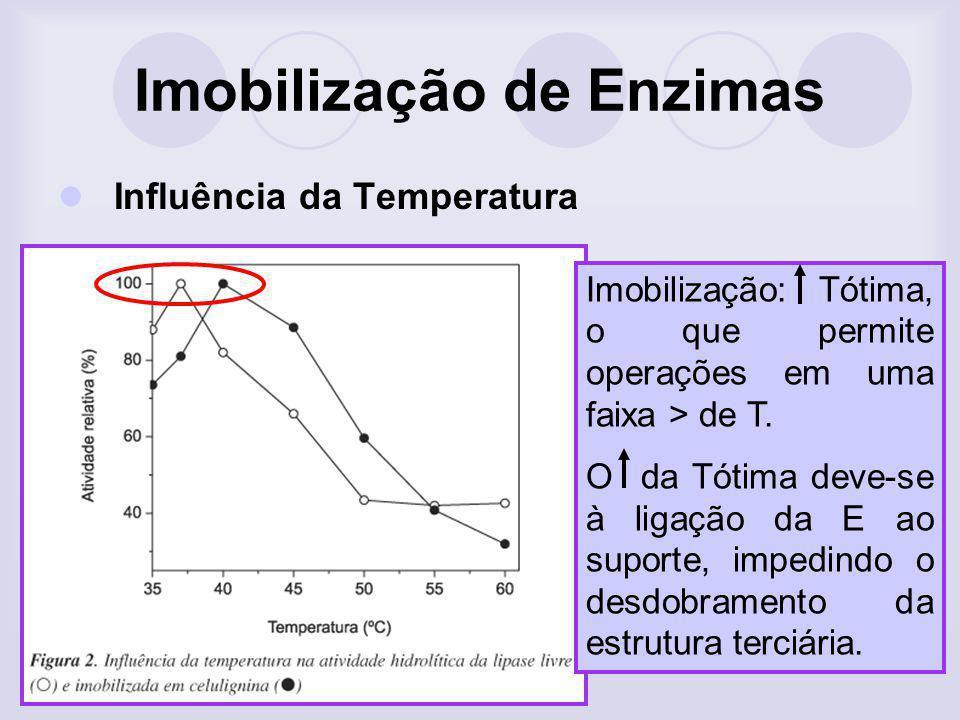 Imobilização de Enzimas Influência da Temperatura Imobilização: Tótima, o que permite operações em uma faixa > de T. O da Tótima deve-se à ligação da