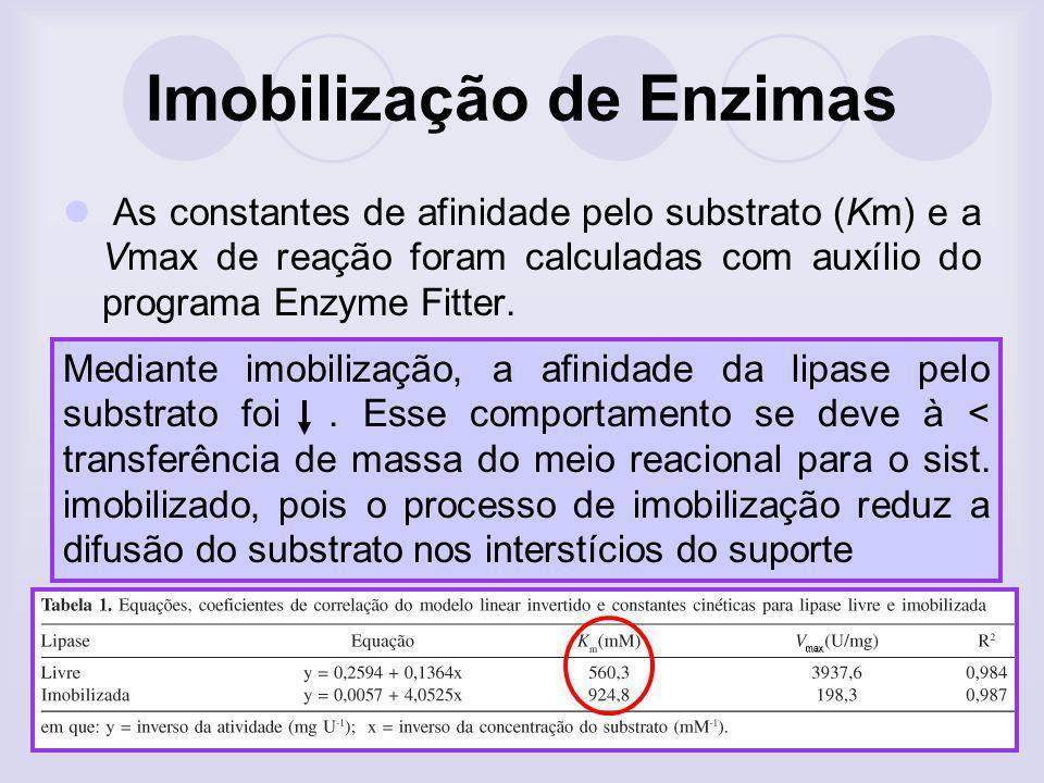 Imobilização de Enzimas As constantes de afinidade pelo substrato (Km) e a Vmax de reação foram calculadas com auxílio do programa Enzyme Fitter. Medi