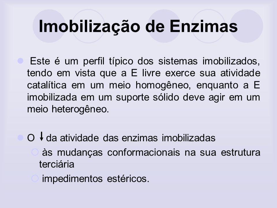 Imobilização de Enzimas Este é um perfil típico dos sistemas imobilizados, tendo em vista que a E livre exerce sua atividade catalítica em um meio hom