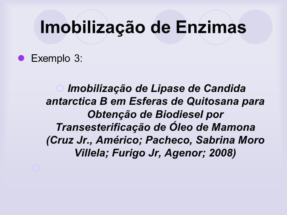 Imobilização de Enzimas Exemplo 3: Imobilização de Lipase de Candida antarctica B em Esferas de Quitosana para Obtenção de BiodieseI por Transesterifi