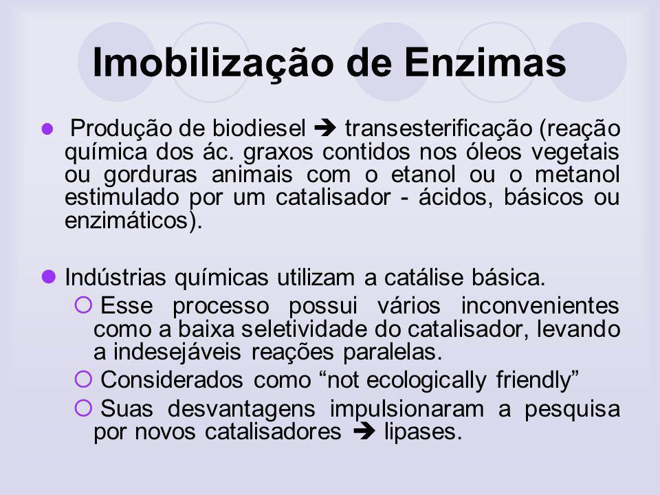Imobilização de Enzimas Produção de biodiesel transesterificação (reação química dos ác. graxos contidos nos óleos vegetais ou gorduras animais com o
