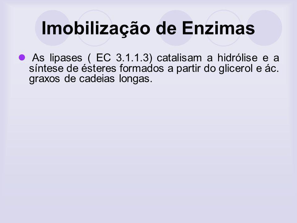 Imobilização de Enzimas As lipases ( EC 3.1.1.3) catalisam a hidrólise e a síntese de ésteres formados a partir do glicerol e ác. graxos de cadeias lo